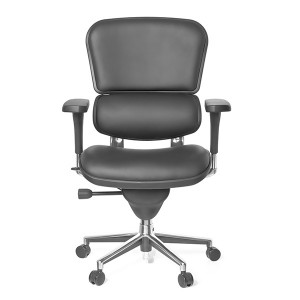 Ergohuman V1 Leather Office Chair Compare