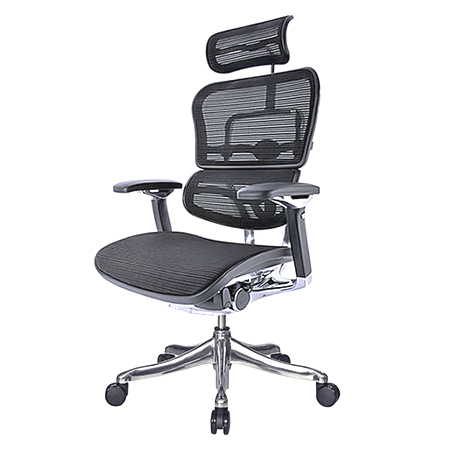 Ergohuman vs ikea markus what are the differences for Chair vs chairman