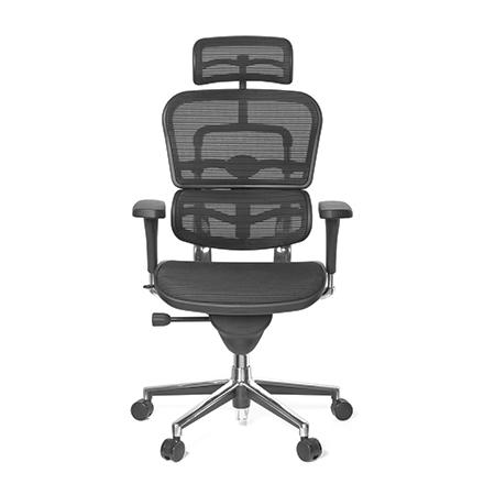 Ergohuman Classic Mesh Chair