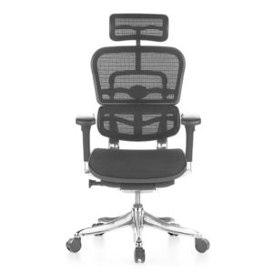 Ergohuman Elite Mesh Chair