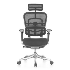 Ergohuman Luxury Mesh Office Chair