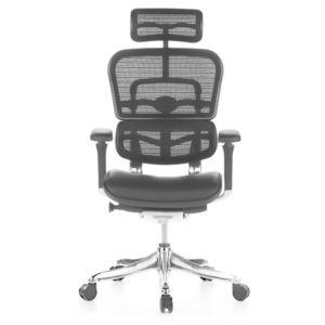 Ergohuman Leather Seat Mesh Combo