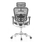 ERG-LBLM-HR-3Ergohuman Leather Seat with Mesh Combo