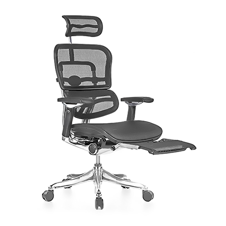 Ergohuman Luxury Boost Mesh Chair