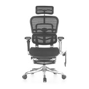 Ergohuman Luxury Boost Mesh Chair