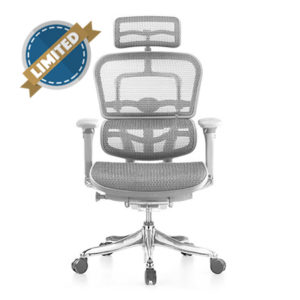 Ergohuman Luxury Grey Mesh Chair