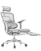 Ergohuman Luxury Grey Mesh Chair with Fold Away Leg Rest