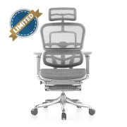Ergohuman Luxury Grey Mesh Chair with Legrest