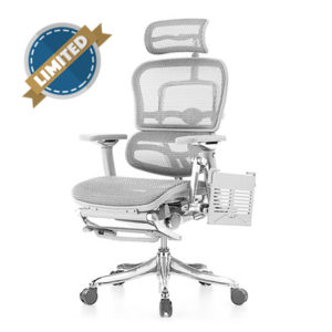Ergohuman Luxury Grey Mesh Chair with Laptop